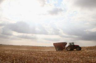 """""""Најгоре до сада"""": Фармери у САД напуштају њиве и продају механизацију 9"""