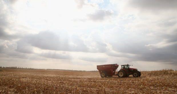 """""""Најгоре до сада"""": Фармери у САД напуштају њиве и продају механизацију"""