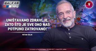 ИНТЕРВЈУ: Петар Челик - Уништавамо здравље, зато што је све око нас затровано! (видео) 8