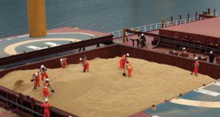Блумберг: Kина суспендовала куповину соје из САД