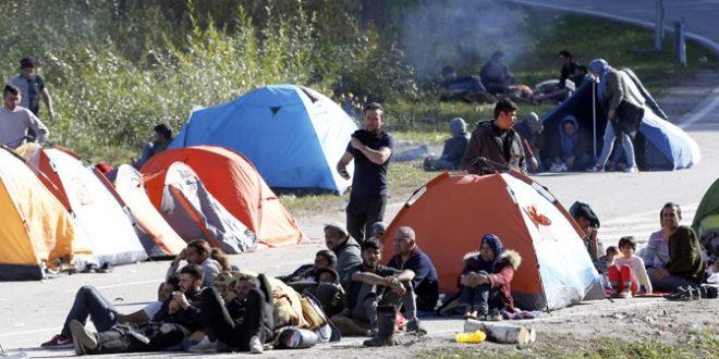 Сукоб миграната и полиције у Великој Кладуши 1