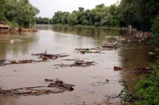 Под водом око 3.000 хектара земље, Велика Морава набујала, носи велике количине смећа