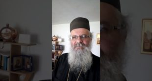 Архимандрит др Никодим Богосављевић: Сви епископи СПЦ су у јереси (видео) 8