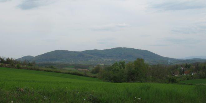 У Тами Благо – Света гора надомак Београда 1