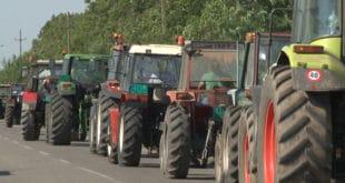 Пољопривредници Долова најавили протест због мизерне откупне цене сунцокрета