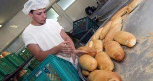 Сомбор: Недостају шивачи, возачи, али и пекари и металци 5