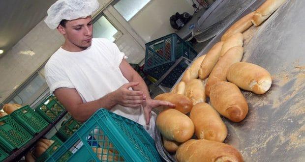 Сомбор: Недостају шивачи, возачи, али и пекари и металци