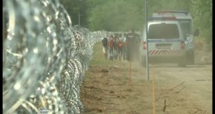 Мигрантска криза: У Србију лако, из Србије никако (видео) 13