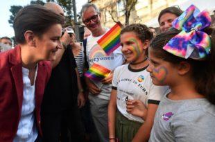 Ана Брнабић понижава већинску нормалну и традиционалну Србију, треба законом забранити промоцију хомосексуализма међу малолетним особама 7