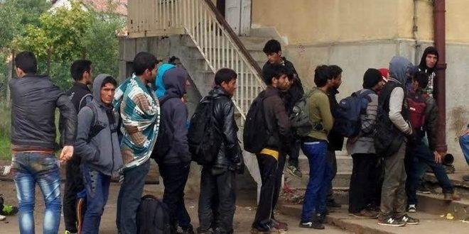 Банде мигранта у Kуршумлији нападају људе и отимају аутомобиле! 1
