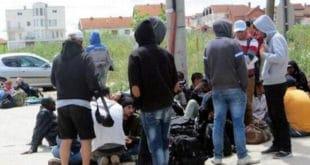 Мигранти на југу Србије нападају свештенике и организовано пљачкају куће! 11