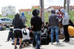 Мигранти на југу Србије нападају свештенике и организовано пљачкају куће! 7