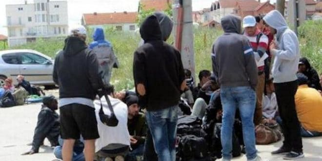 Мигранти на југу Србије нападају свештенике и организовано пљачкају куће!
