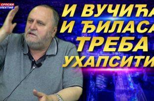 """Милован Бркић: """"И Вучића и Ђиласа треба ухапсити! Те битанге су заједно уништиле Србију""""! (видео)"""