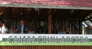 Србија: Отворен Сајам свињарства, али без - свиња 5