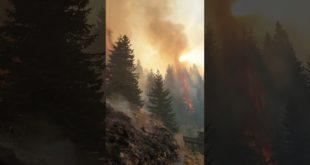 Пожар на Старој планини тренутно највећи у Европи (видео)