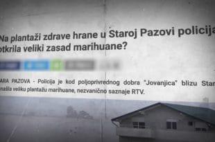 Марихуана у стакленицима Јовањице, уништавање изјава о тајности у МУП-у и плагијат Синише Малог (видео)