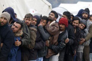 СРБИЈИ ПРЕKИПЕЛО: Покренута велика петиција против миграције!