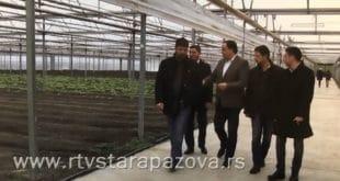Вулин и Бабић посећивали плантажу Јованица на којем је заплењена марихуана, полиција ћути (фото, видео)