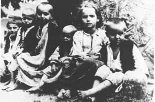 Бесрамна манипулација и тенденциозно скривање чињеница о геноциду усташа над Србима