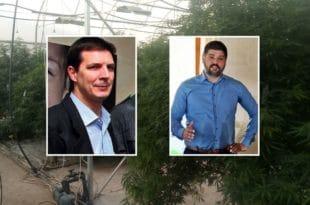 """Случај плантаже марихуане """"Јовањица"""": Потврђена оптужница против Предрага Колувије"""