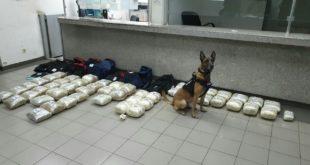 Нерон пронашао 60 кг дроге у аутобусу са Kосова