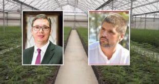 """Kако су се путеви ухапшеног власника плантаже марихуане """"Јовањица"""" укрштали са Вучићевим?"""
