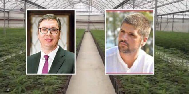 Потврђено да је власник плантаже марихуане био у делегацији са Вучићем