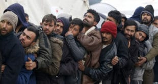 ДЕФИНИТИВНО ОСТАЈУ У СРБИЈИ: У Београду одржан велики панел за запошљавање миграната!