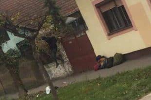 БОЈИМ СЕ ЗА СВОЈ ЖИВОТ: Мигранти снимљени како упадају у куће по Сомбору, медији игноришу! (фото)