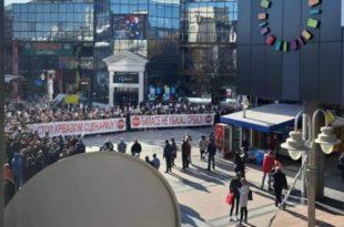 Ниш: Наркоман Вучић истерао ботове да први пут у историји као власт протестују против опозиције!