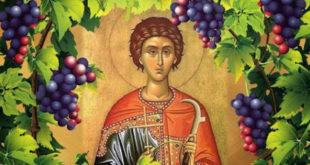 Данас славимо Светог Трифуна