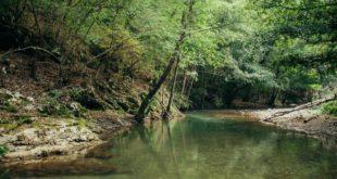 Забранити изградњу деривационо-гравитационих мини хидроелектрана (МХЕ) на територији Ваљева