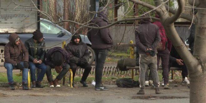 Повећан број миграната на северу Војводине, држава се не обрачунава са кријумчарима