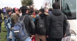 Пуни аутобуси: Ердоган дигао рампу да избеглице слободно улазе у Европу (видео)