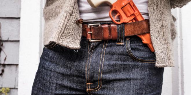 Нелогичности у Закону о оружју