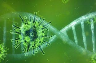 Чувени имунолог тврди да ће корона у Европи нестати брже него што је ико мислио