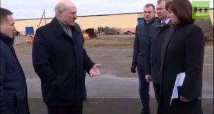 Лукашенко ужаснут стањем крава: Зашто сте ме довели, да наредим ваше хапшење? (видео)
