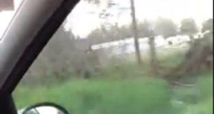 ВАНРЕДНО СТАЊЕ: Мигранти насељени у Белу Паланку, у Обреновцу осванула гомила шатора! (видео)