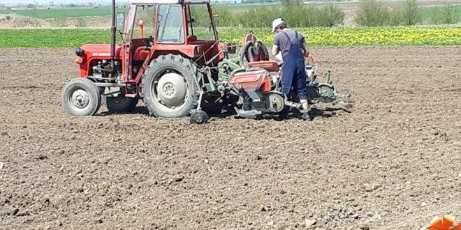 Време цури: Хоће ли пољопривредници добити дозволе пре него што наступе погубне последице