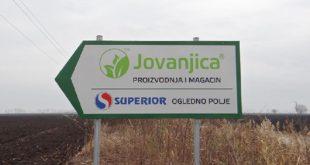 Продужен притвор Kолувији и осумњиченима за плантажу марихуане Јовањица