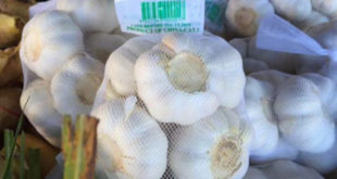 Опет расте увоз кинеског белог лука