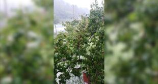 Јако невреме погодило Ивањицу: Поплављене куће, мештани лопатама скупљали град (видео)