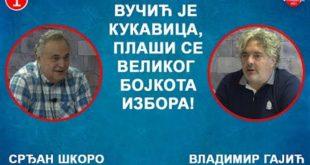 Срђан Шкоро и Владимир Гајић - Вучић је кукавица, плаши се бојкота избора! (видео)