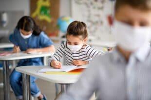 Родитељи, ђаци, студенти: Све што треба знате о поласку у школе, вртиће и на факултете