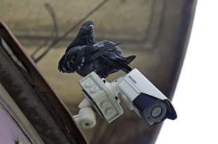 МУП планира надзор са 8100 камера, непознато да ли већ користи софтвер за препознавање лица
