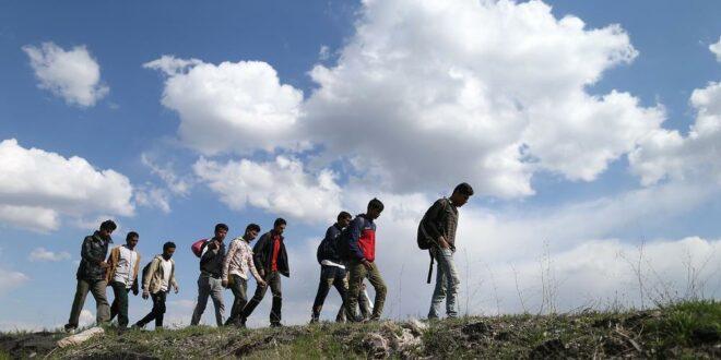 Мигранти упадају у села општине Кладово, довозе их организовано из Београда