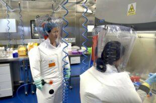"""У Вухану коронавирусу слепих мишева додат један """"шиљак"""" који га је учинио много заразнијим!"""