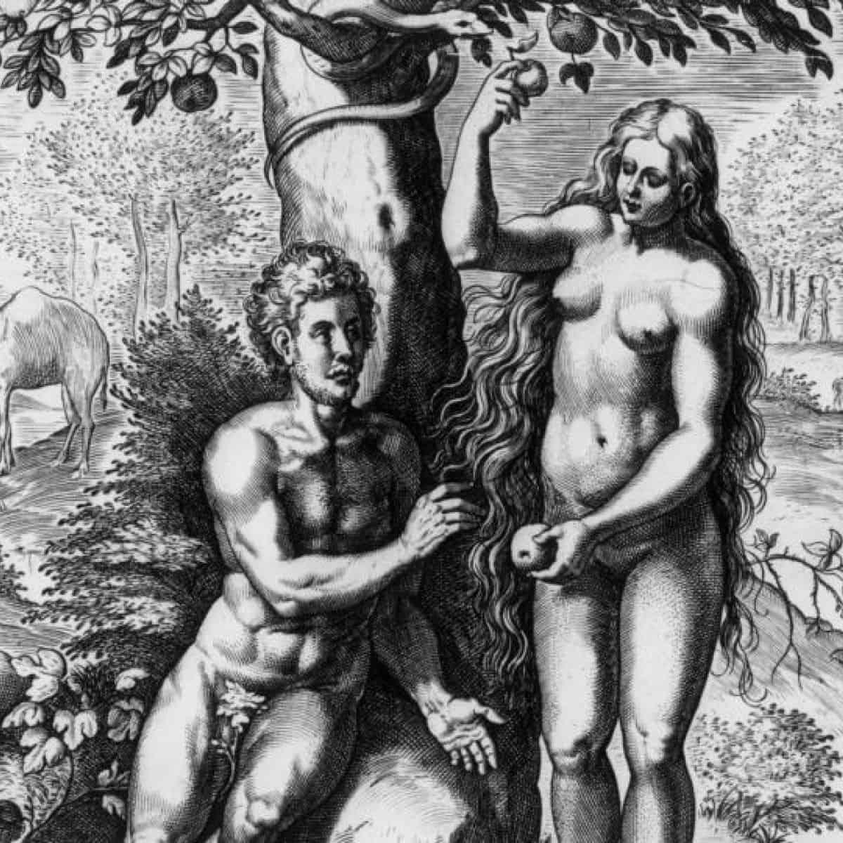 Комерцијалне секте и култови