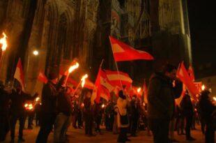 Аустријанци изашли на улице: Палили бакље и носили заставе (видео)